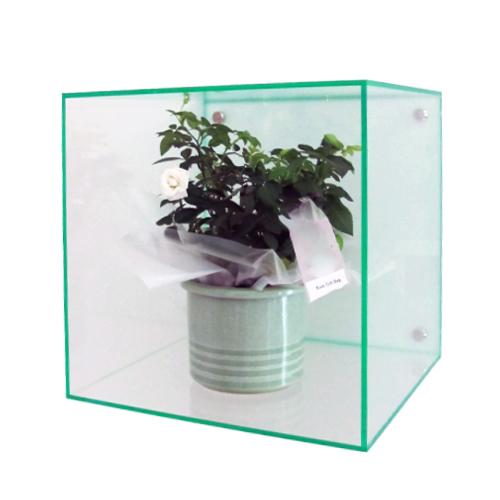 Vw6 Wall Mounted Acrylic Cubes Boxes